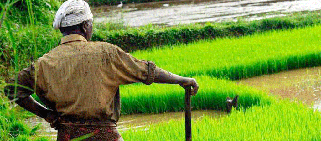Forced to Quit Studies, Kerala Farmer Donates Rs 40K to Print Books For Tribal Kids