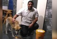 Dog-saved-life-of-65-years-old-doctor